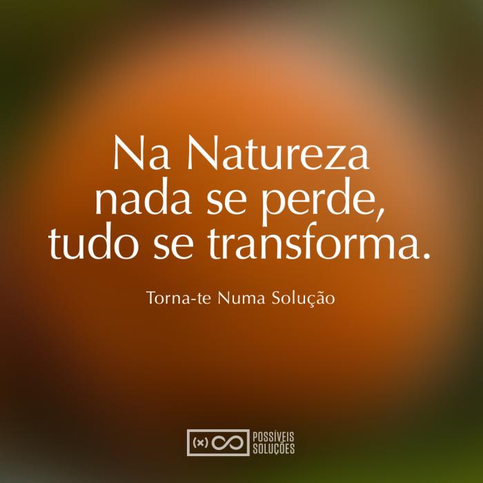 possiveis_solucoes_na-natureza-nada-se-perde-tudo-se-transforma